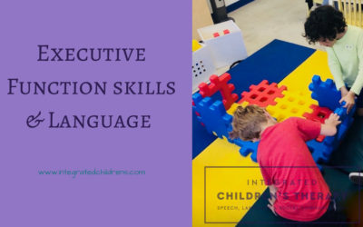 Executive Function Skills & Language