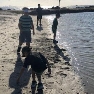 Beach Cleanup 12