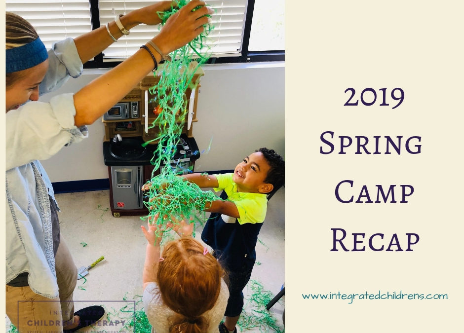 Spring Camp 1